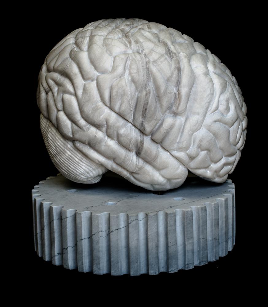 Cognitive_side-view_Marcus-Kucey-Jones
