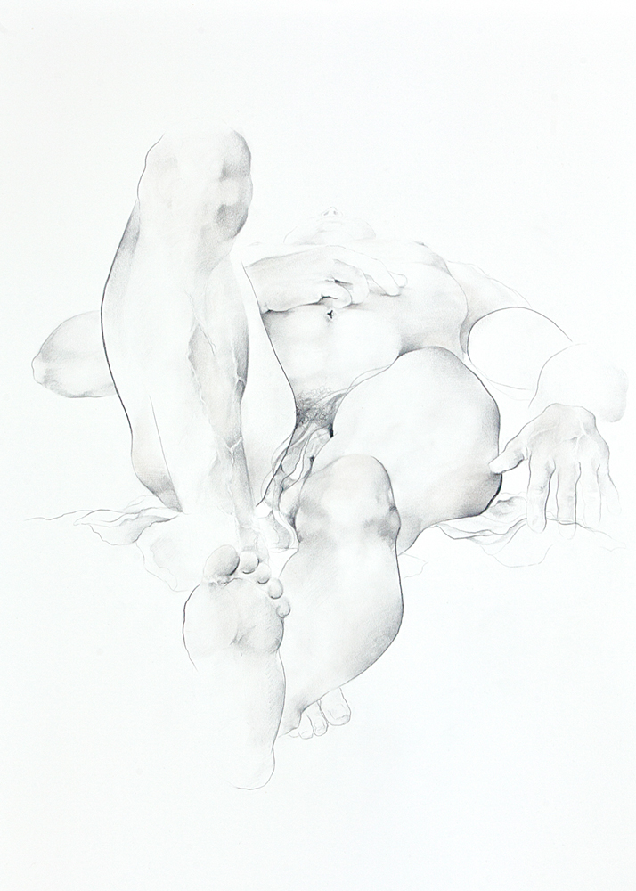 Artist Sue Adams drawings at Sivarulrasa Gallery in Almonte, Ontario