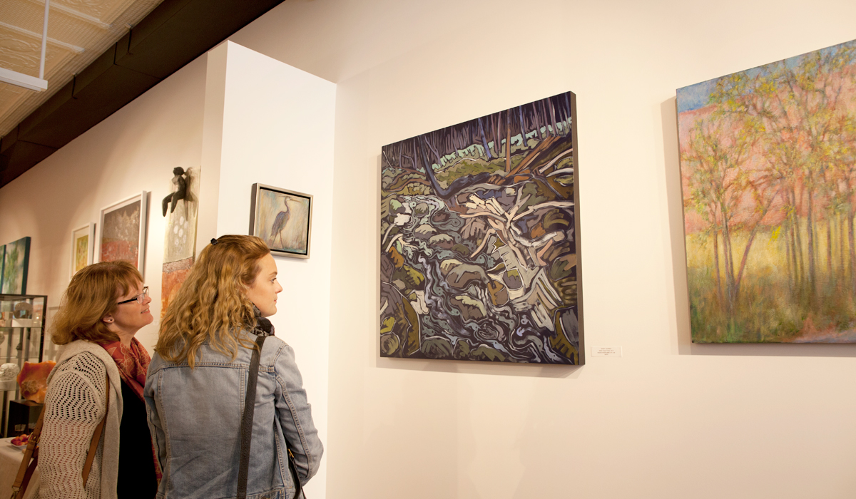 Backlands, vernissage at Sivarulrasa Gallery, featured artists: Barbara Gamble and Susan Tooke