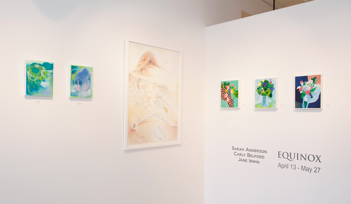 Sarah Anderson, Carly Belford, and Jane Irwin paintings and drawings at Sivarulrasa Gallery