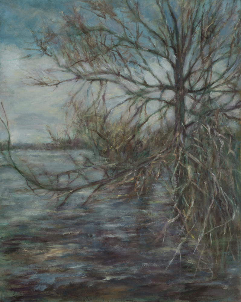 FLOODED RIVER, OTTAWA, Barbara Gamble