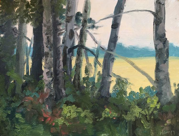 Artist Karen Haines paintings at Sivarulrasa Gallery in Almonte, Ontario