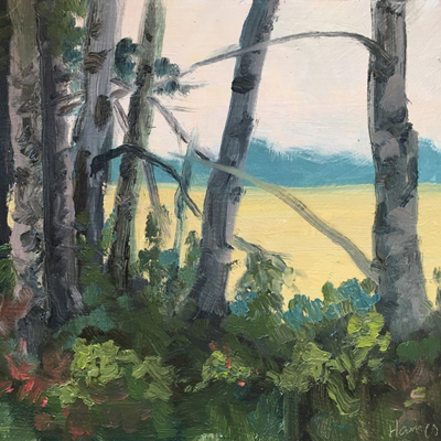 Karen Haines paintings at Sivarulrasa Gallery